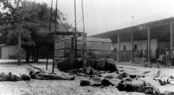 """La huelga general """"de brazos caídos"""" de 1944"""